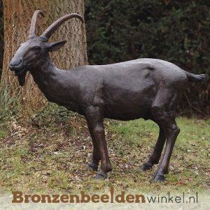 Bronzen bokken en geiten beelden