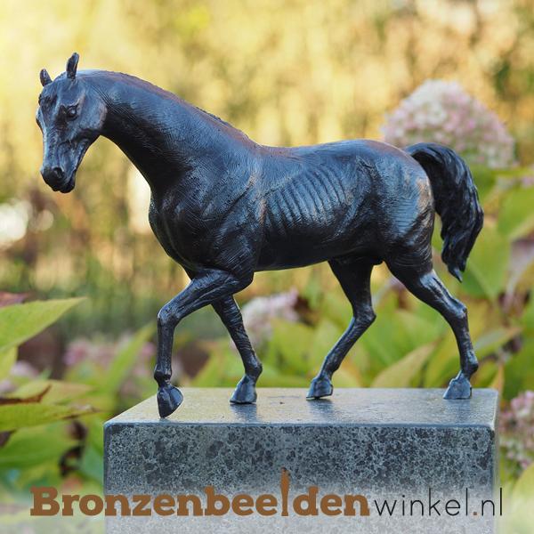 Bronzen paarden beelden
