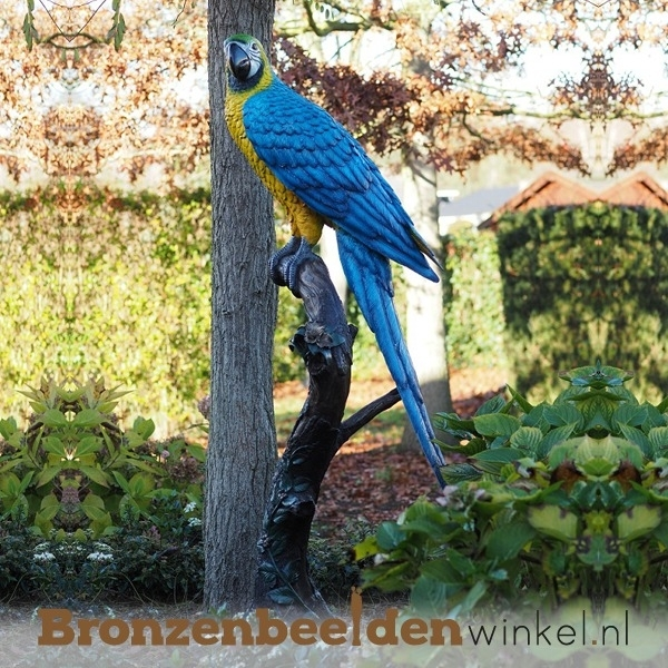 Bronzen papegaai beeld
