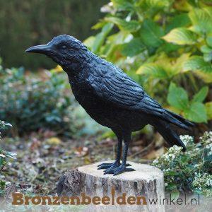 bronzen raven, raaf beeld